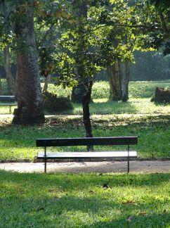 ac0127350eebb19856c27c2d6127f925-park-benches-street-lights